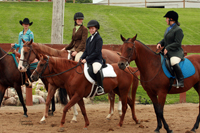 Holly Equestrian Team